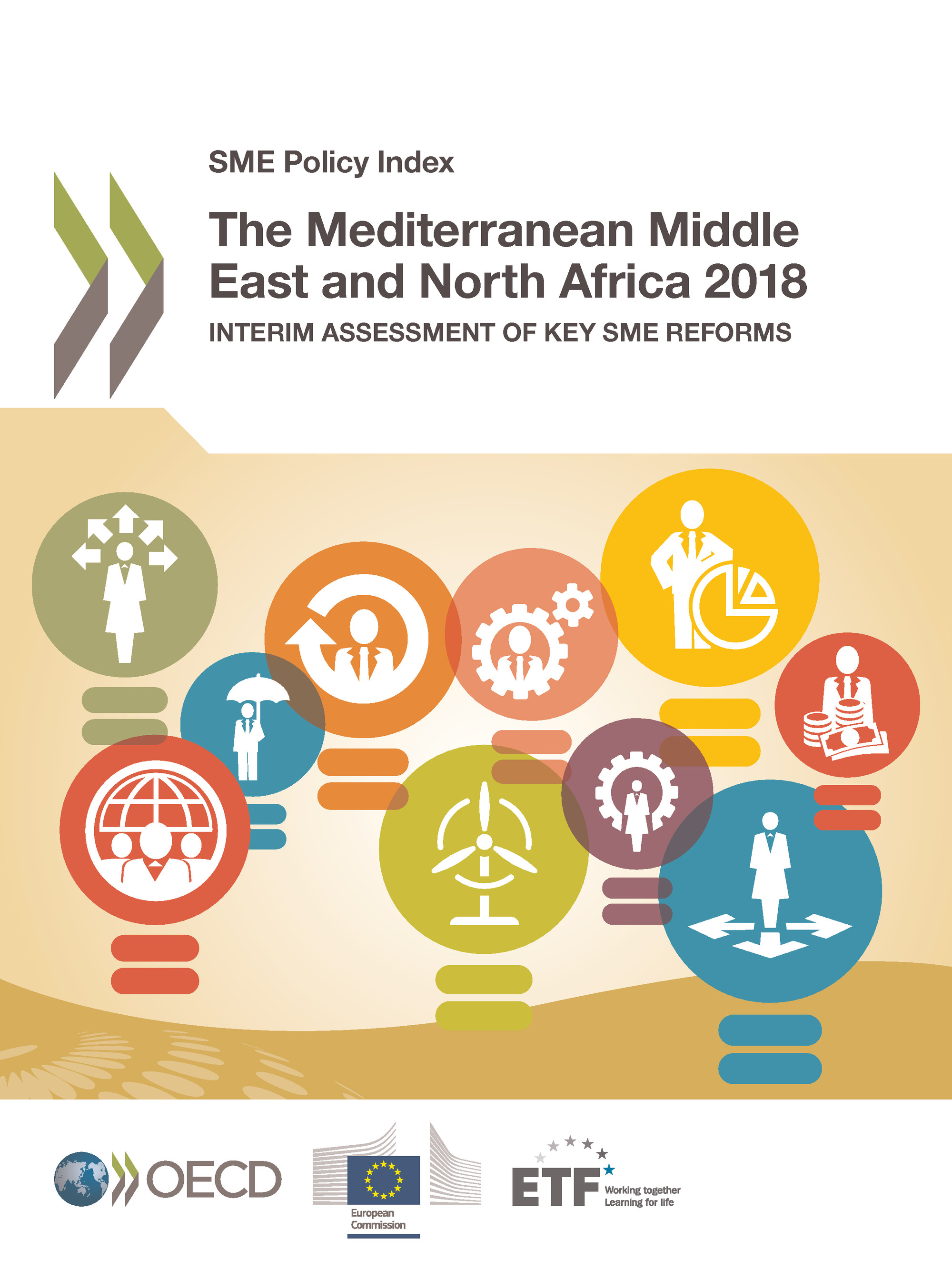 The Mediterranean Middle East and North Africa 2018 De  Collectif - OCDE / OECD