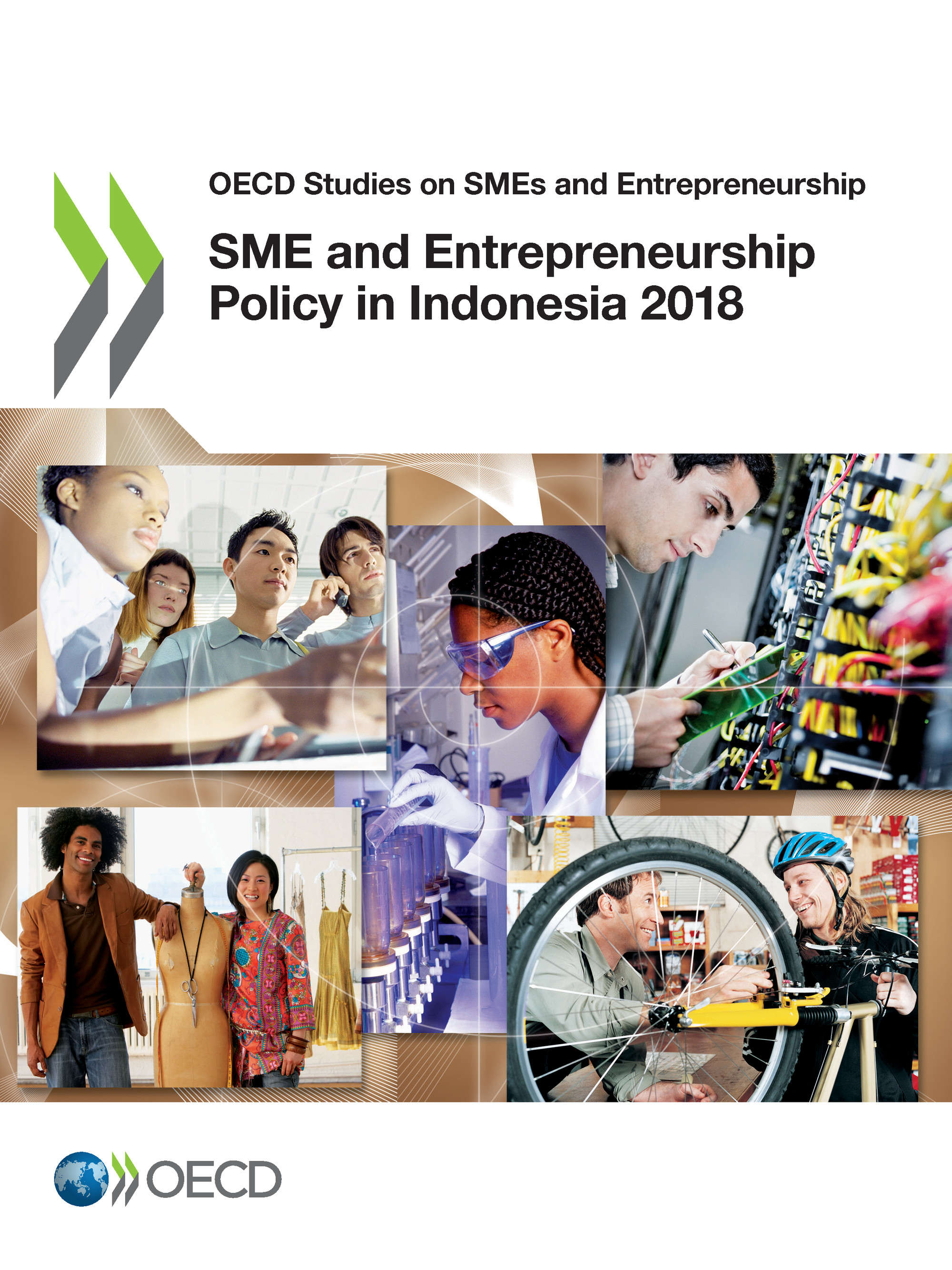SME and Entrepreneurship Policy in Indonesia 2018 De  Collectif - OCDE / OECD